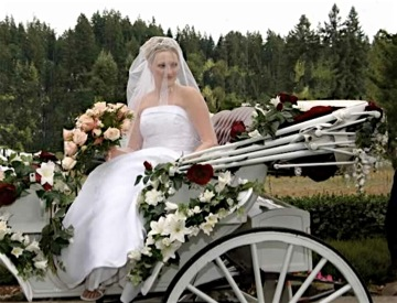 Horse drawn carriage with wedding bride